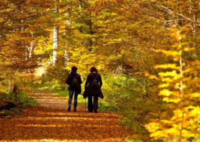 Podzimní výšlap