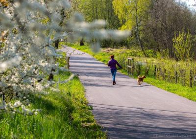 Vyzkoušejte jaro na Lipně